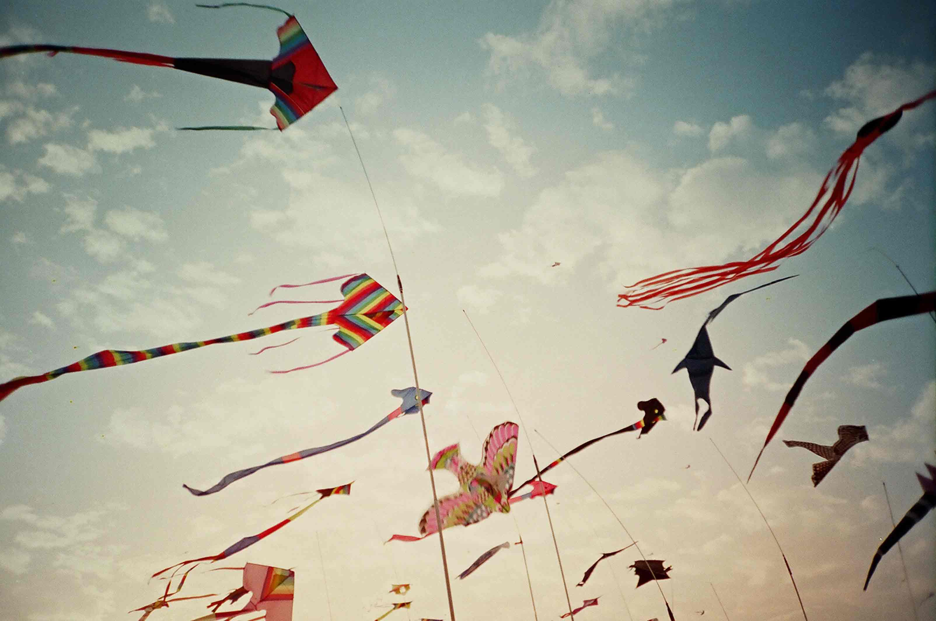 kite flying and business essay Kite flying is one of the most popular sports and festival in india according to the greek literature, kite-flying dates back to as old as 14th century and later came to india and other asian countries.